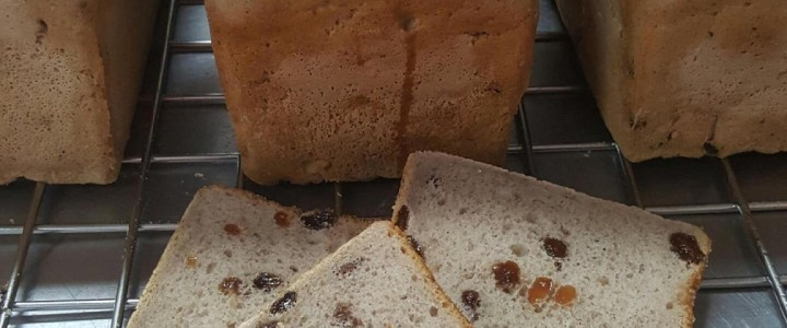 Easy to slice gluten free sultana loaf only at Artizan Gluten Free Bakery Rockhampton